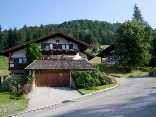 Nice Condo with Internet Access and Wireless Internet - Reit im Winkl vacation rentals