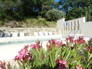 Le clos des oliviers - Gîte Marguerite - Aubignan vacation rentals