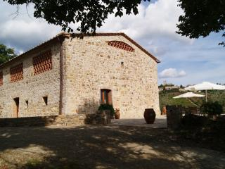 Beautiful 5 bedroom Villa in Castellina In Chianti with Internet Access - Castellina In Chianti vacation rentals