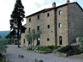 3 bedroom Villa with Internet Access in Province of Arezzo - Province of Arezzo vacation rentals