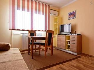 Studio apartment - Slunj vacation rentals
