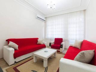 Twin & Next Door Apartments,For Large Groups ! - Istanbul vacation rentals