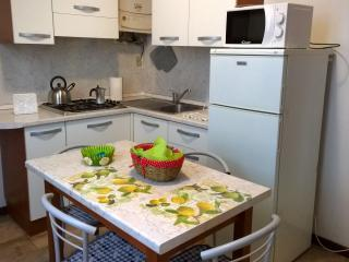 I liutai PT monolocale Ground Floor - Cremona vacation rentals
