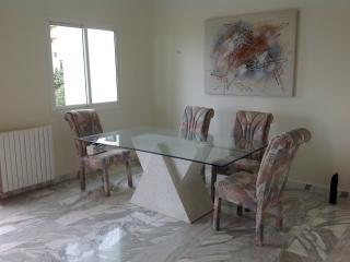 Spacious furnished apartment 3br - Beirut vacation rentals