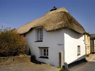 Charming 3 bedroom Malborough Cottage with Washing Machine - Malborough vacation rentals