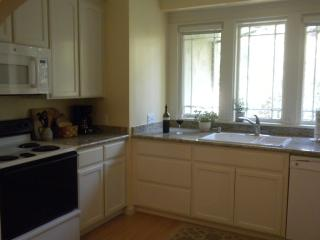 Beautiful House with Internet Access and Dishwasher - Lodi vacation rentals