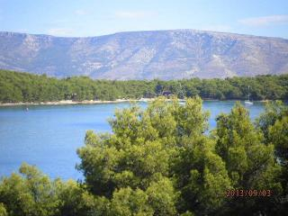 1 bedroom Apartment with Internet Access in Jelsa - Jelsa vacation rentals