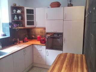 Newly renovated apartment in the city center - Vejle vacation rentals