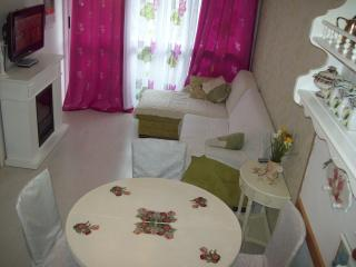 Split apartment - Split vacation rentals