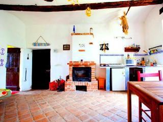Langhe: casa con camino  tra vigne e colline - Clavesana vacation rentals