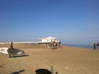senigallia a due passi dal mare e dal centro città - Senigallia vacation rentals