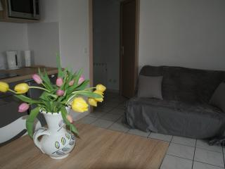 Joli appartement / lac d'Annecy - Saint-Jorioz - Saint-Jorioz vacation rentals