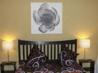 Cozy 2 bedroom Apart at Nevsky ave. - Saint Petersburg vacation rentals