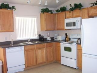 Swinging Disney Villa - Davenport vacation rentals