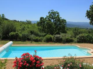 Luberon Vacation Rental with Private Pool, WiFi, Fabulous Views, and Walk to Village - Saint-Saturnin-les-Apt vacation rentals