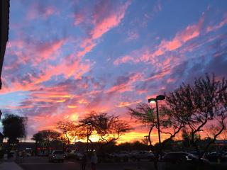 Sunscape sojourn- Sun, See, Sport Scottsdale... - Scottsdale vacation rentals