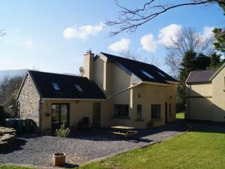 Perfect Cottage with Internet Access and Dishwasher - Bansha vacation rentals