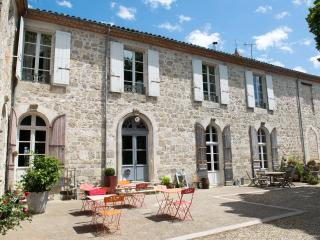 Nice Gite with Internet Access and Television - Lusignan Petit vacation rentals