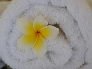 suka's house ubud,bed & breakfast - Ubud vacation rentals