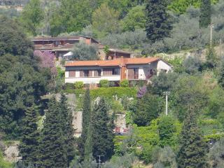 Villa degli Aranci - Florence vacation rentals