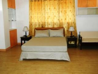 SPACIOUS, BEAUTIFUL VACATION RENTAL in cebu city - Cebu City vacation rentals