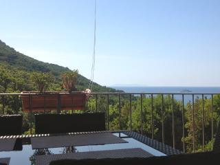 Quadrilocale per 7 persone con terrazza vista mare - Nisportino vacation rentals