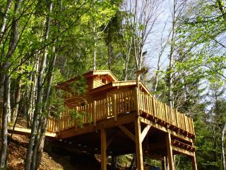 Là-Haut, cabanes dans les arbres avec spa - Chambéry vacation rentals