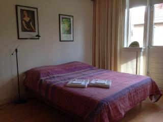 Sunny, quait room near The Centre and IJssel river - Deventer vacation rentals