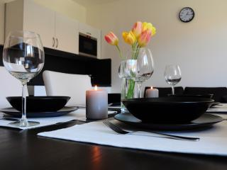 Apartments Ponava - Brno vacation rentals