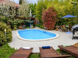 RUSTICAL VILLA WITH PRIVATE POOL NEAR DUBROVNIK - Dubravka vacation rentals