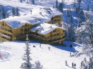 Ski in/out Chalet in Belle Plagne, Macot-La-Plagne - Macot-la-Plagne vacation rentals