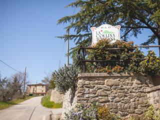 Perfect Condo with Internet Access and Wireless Internet - Civitella in Val di Chiana vacation rentals