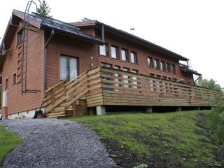 Comfortable Cottage with Internet Access and Outdoor Dining Area - Hankasalmi vacation rentals