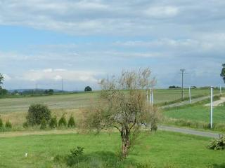 Holiday Gite/Cottage in the Mayenne area - Mayenne vacation rentals