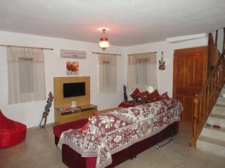 Perfect Villa with Internet Access and A/C - Fethiye vacation rentals