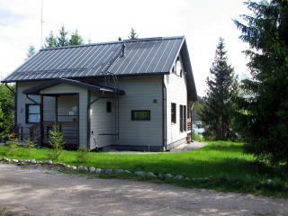 Nice 4 bedroom Cottage in Hankasalmi - Hankasalmi vacation rentals