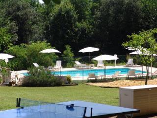 LES PETITS PRES - 7 Gites de caractères + piscine - Vitrac vacation rentals