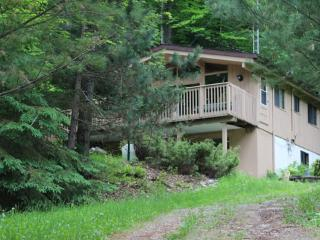 Ski Chalet In the Heart of Haliburton County - Eagle Lake vacation rentals