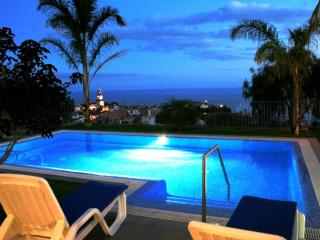 LUXURIOUS PALMS VILLA - Arco da Calheta vacation rentals