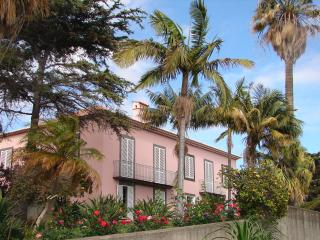 QUINTA DO BOM SUCESSO,a farm in Fx over the harbor - Funchal vacation rentals