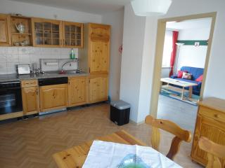 Nice Condo with Internet Access and Dishwasher - Hirschau vacation rentals