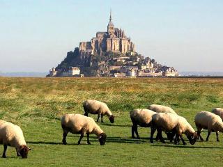 Gite à proximité du Mont St Michel - Roz-sur-Couesnon vacation rentals