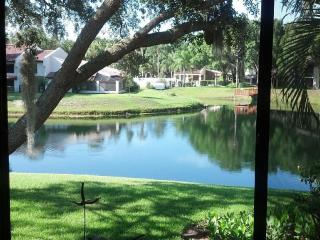 Tarpon Woods Condo with Lake View - Palm Harbor vacation rentals
