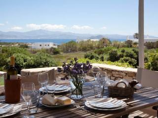 Villa Myrtia - Romantic getaway next to best beach - Naoussa vacation rentals