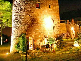 Nice Tower with Toaster and Satellite Or Cable TV - Tuscania vacation rentals