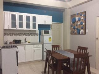 Nice Studio with Internet Access and A/C - Tunapuna vacation rentals