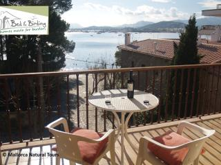 LOVELY APARTMENT 20m FROM THE BEACH, A/C, WI-FI - Port de Pollenca vacation rentals