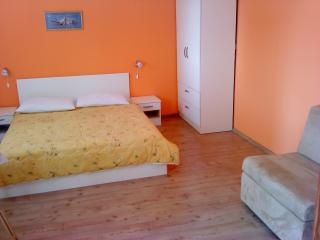 Nice 1 bedroom Condo in Srima - Srima vacation rentals
