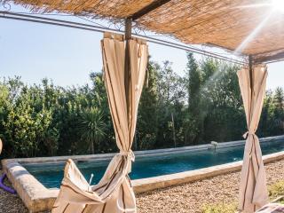 maison de charme dans domaine viticole - Gabian vacation rentals