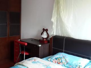 Down town Guangzhou  metro&riverside nice room - Guangzhou vacation rentals